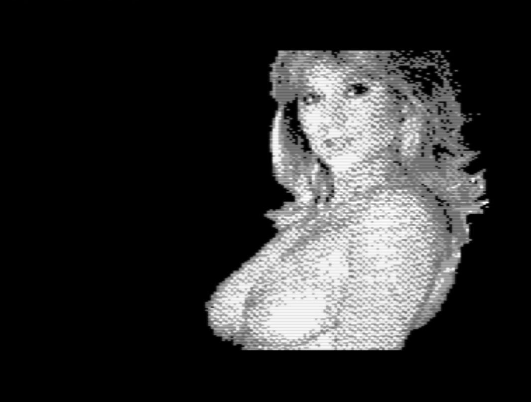 L'écran de fin du jeu en version C64. Tétonnant, non ?